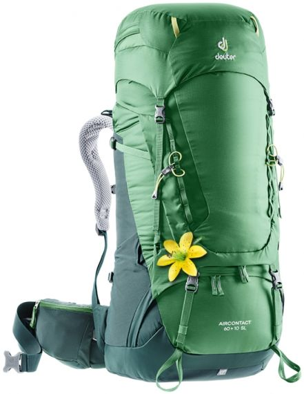 "Deuter ""Aircontact 60 + 10 SL"" - forest"
