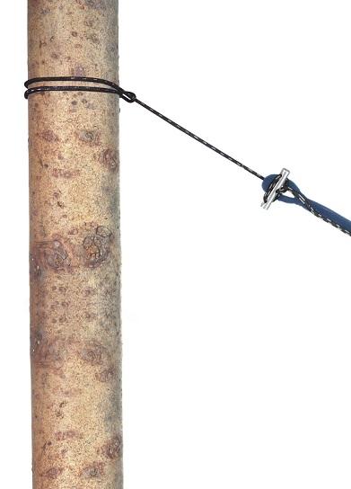 """Amazonas """"Hängemattenzubehör Micro Rope"""""""